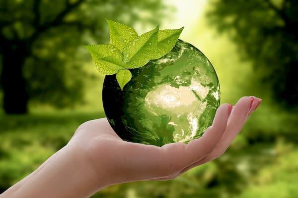 O que é Desenvolvimento Sustentável e 5 práticas sustentáveis para um mundo melhor